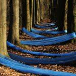 blau-allee
